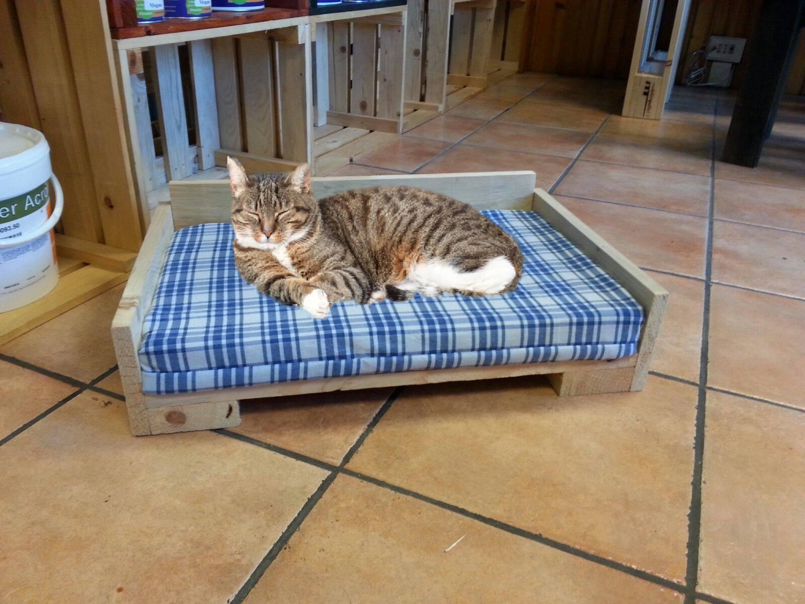 Cuccia Gatto Fai Da Te cuccia-lettino - mobili in pallet